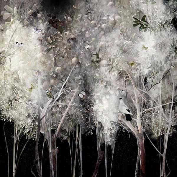 ysabel lemay @ minimal exposition