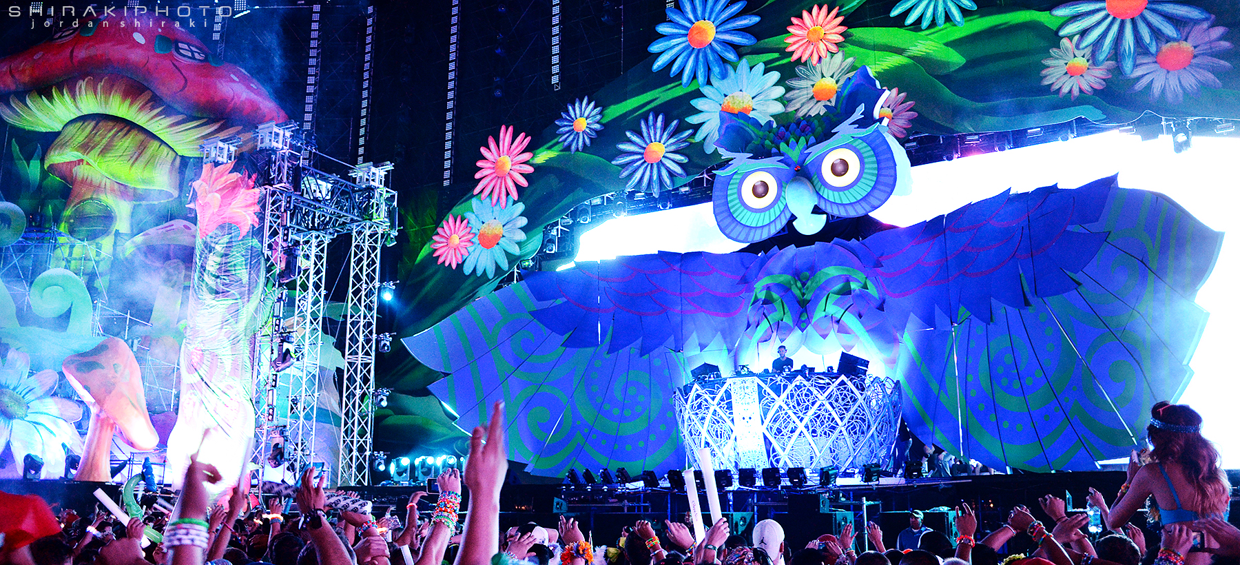 themes electricdaisycarnival
